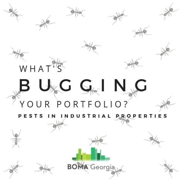 Pests in Industrial Properties